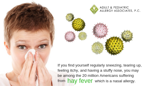 Arizona Allergies - Hayfever