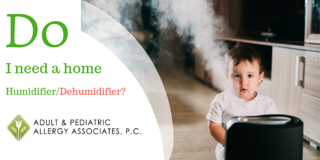 Do I Need a Home Humidifier/Dehumidifier?
