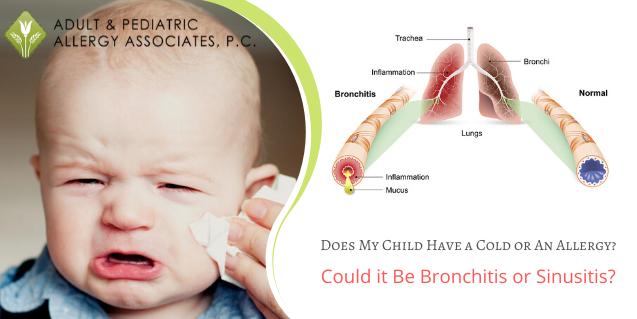 Does My Child Have a Cold or An Allergy? Could it Be Bronchitis or Sinusitis?