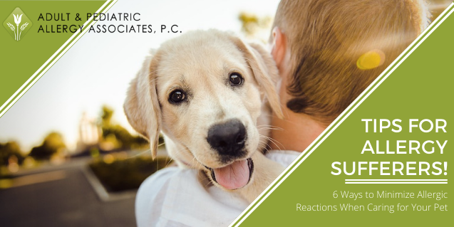 Tips for Allergy Sufferers: 6 Ways to Minimize Allergic Reactions When Caring for Your Pet