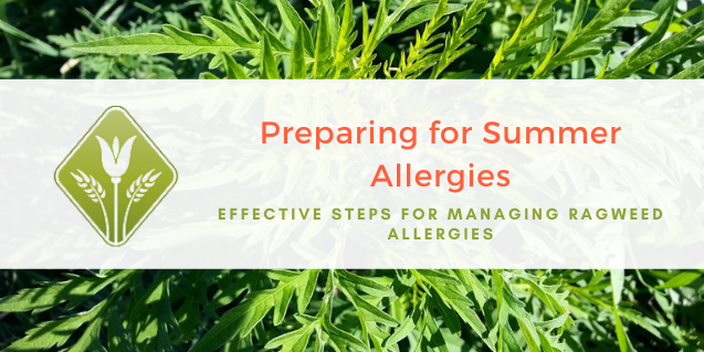 Preparing for Summer Allergies – Effective Steps for Managing Ragweed Allergies